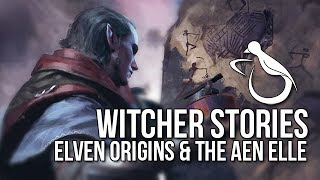 Witcher Stories - Elven Origins & The Aen Elle (Elves 1/4)