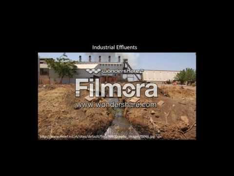 Water Pollution in Brazil. Qarbon Campus film by Mariam Deedat