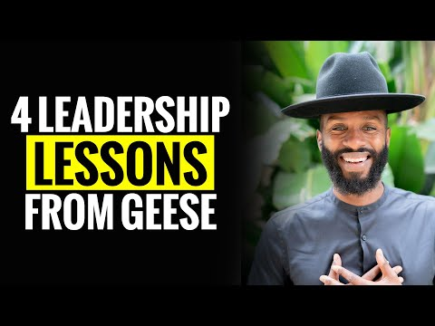4 Leadership lessons from Geese