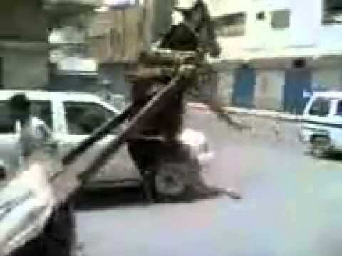 Donkey Lifted By Cart video