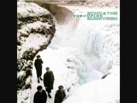 Echo & The Bunnymen - My White Devil