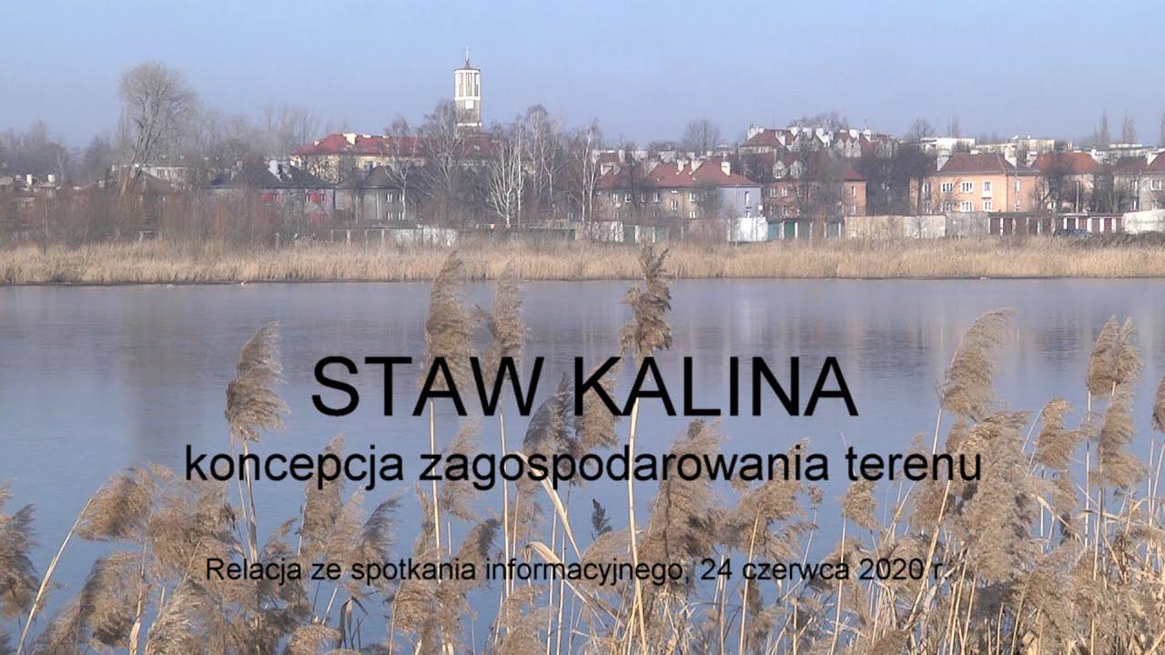 Staw Kalina - koncepcja zagospodarowania terenu