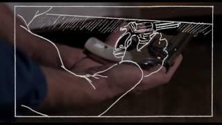 Storyboarding BLOOD SIMPLE