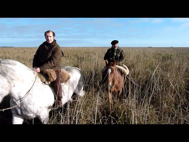 Caza en Argentina 2011 Chanchos 035.MTS