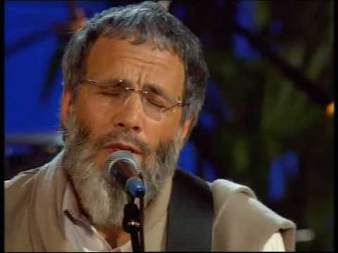 Cat Stevens - The Beloved