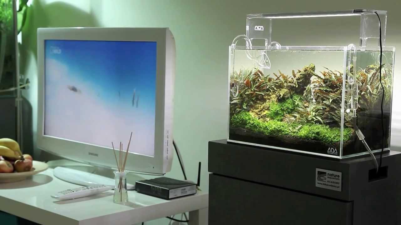 Ada Mini M Amp Aqua Sky 2 Naacademy Pl Youtube