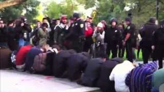 Cop Who Pepper-Sprayed Protesters Awarded $38K  10/25/13