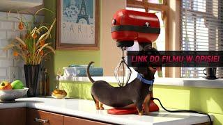 Sekretne życie zwierzaków domowych Cały Film Online ( 2016 ) Po Polsku - CDA