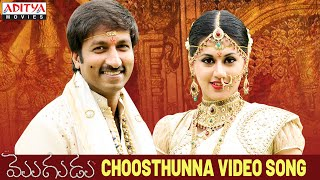 Choosthunna Song - Mogudu Video Songs - Gopichand, Taapsee