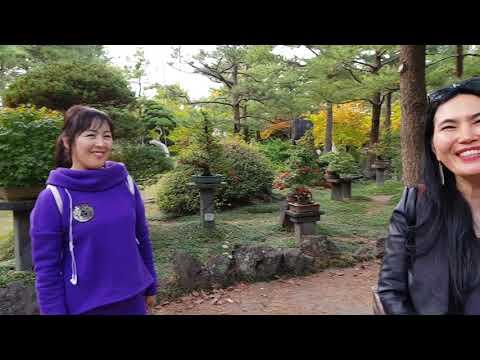 2 часть. Ботанический сад острова ЧеДжу, Южная Корея