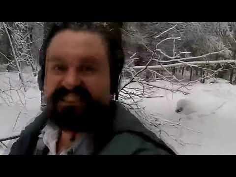 Алексей Макеев уделал старую ведьму
