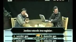 The best of Noćna mora - Jaran i jarebica