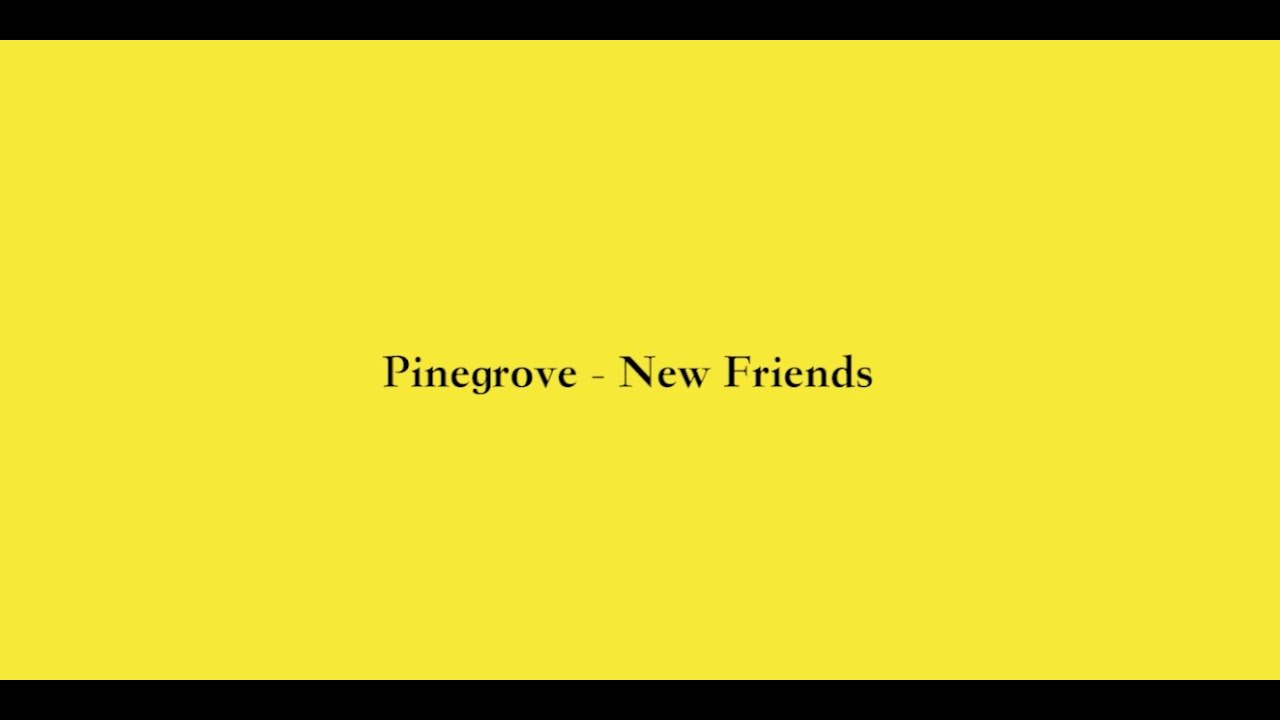 Pinegrove - New Friends (Tour Video)