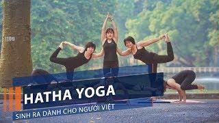 Hatha Yoga: Sinh ra dành cho người Việt   VTC1
