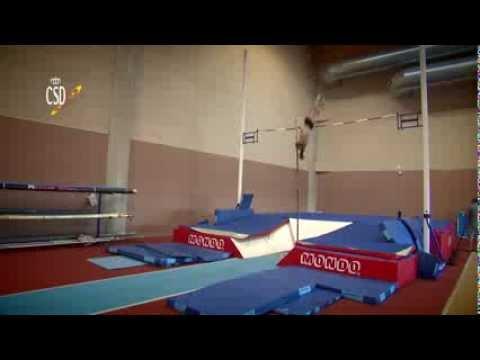 Centro Especializado de Alto Rendimiento Deportivo (CEARD) de LEÓN (ESP)