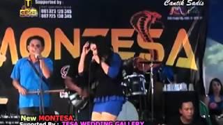 PONGDUT Montesa KOSIPA  2015