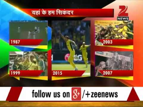 ICC World Cup 2015 Final: Fans celebrate Australia's victory against New Zealand