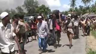 Video: Rohingya Cleansing in Arakan of Burma (documentary)