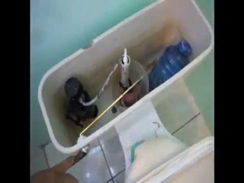 Taza del baño