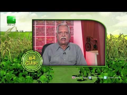 Baatein Kheti Ki: Different Types Of Seeds For Rabi Season Crops  - Full Episode Green TV