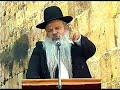 הרב דניאל זר - פרש פרש