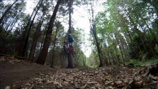 Ribbesford downhill track England with Specialized SX & Big Hit  Trek Session Santa cruz bullet