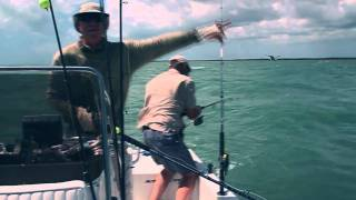 :: Sport Fishing TV :: Tarpon