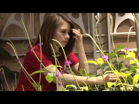 Beyond the Classroom: Lindsey Pitman
