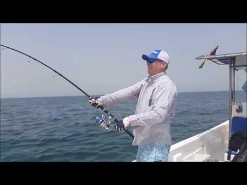 Cobia Fishing with worldsportfishing.com, Guinea Bissau