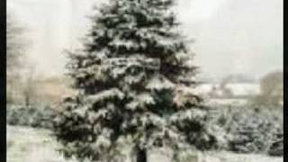 Watch Christmas Carols Deck The Halls video