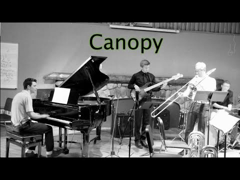 Canopy (live) - original composition [Jazz/Funk]