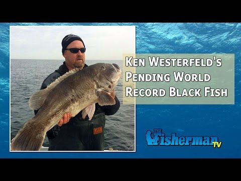 January 5, 2015 New Jersey/Delaware Bay Fishing Report with Chris Lido