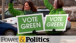 P.E.I. Greens poised for historic election   Power & Politics