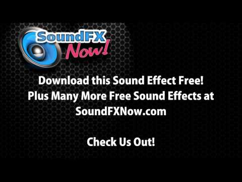 Adult Male Screaming - Sound Effect.mp4 video