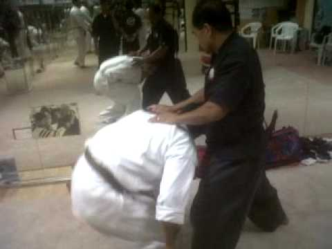 Oman Shorin Ryu Combat technique Image 1