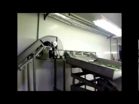 video maq  envasadora de pepino
