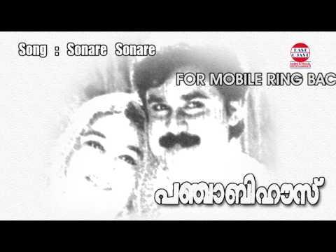 Punjabi House | Sonare Sonare | M.G.Sreekumar