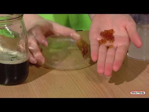 Как сделать червяка химия