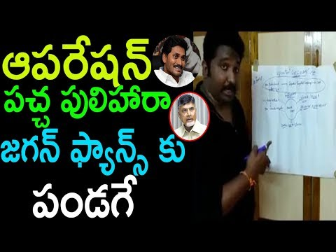 ఆపరేషన్ పచ్చ పులిహారా  Janasena Fans Kalyan Dileep Sunkara VS TDP Chandrababu | Cinema Politics