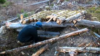 The Log Shelter - Part 1