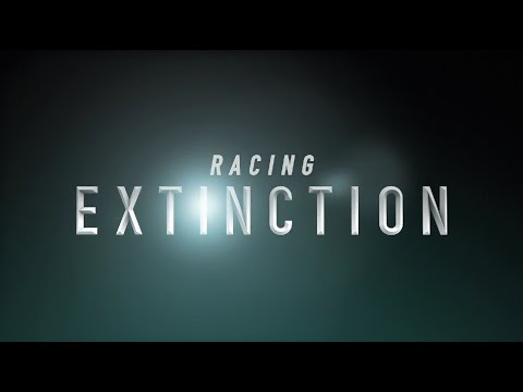 """Racing Extinction"" Official Festival Trailer"