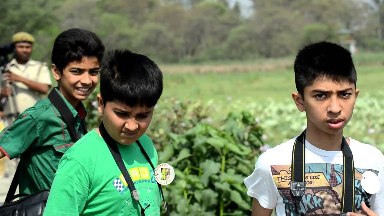 Nawabganj Bird Sanctuary Review Nawabganj Bird Sanctuary Green