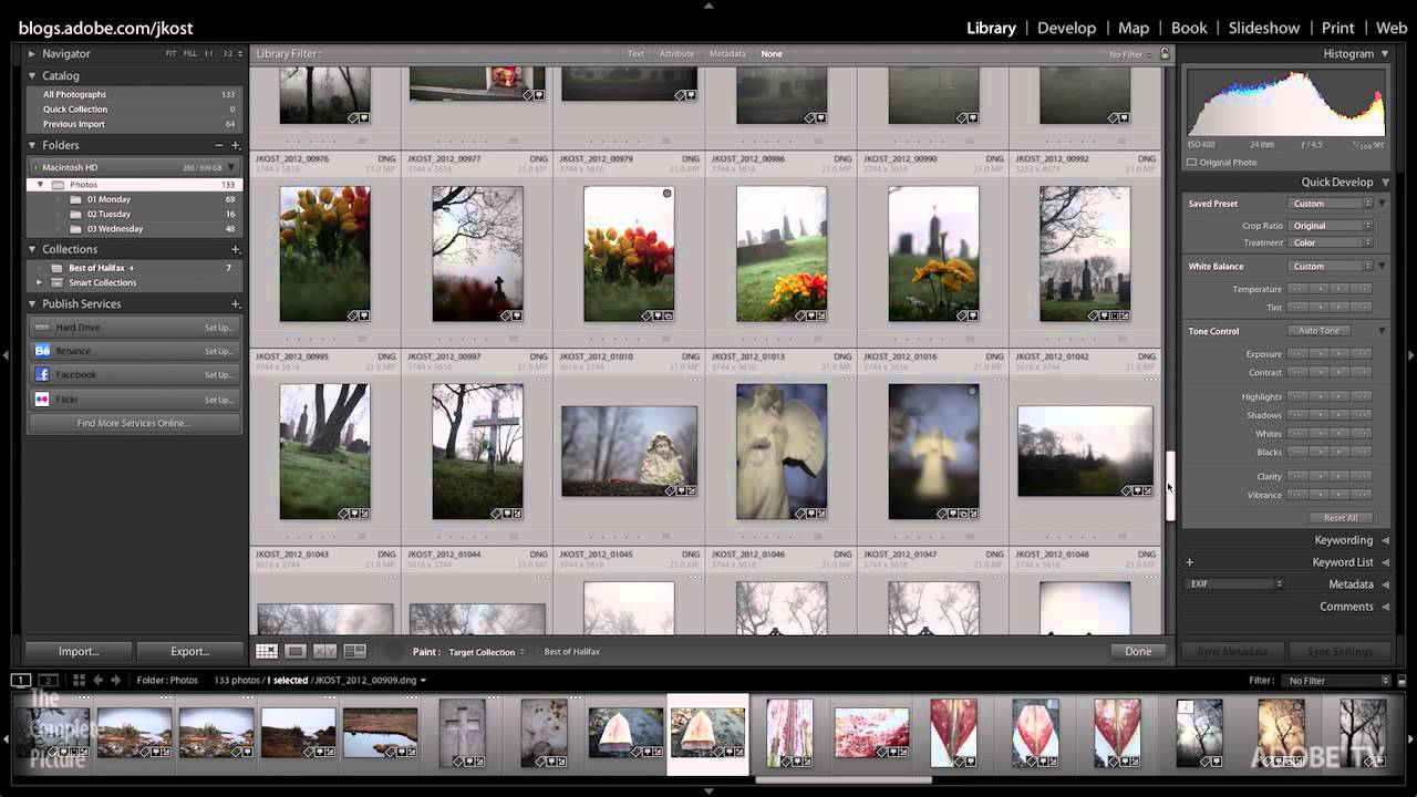 Top 10 Reasons to Use Lightroom