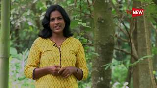 Meet Dr Narayanan who lives for tribals at Attappadi - We Salute | Tv New