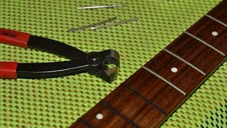Download Lagu Fretless bass conversion Gratis STAFABAND