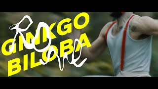 Clip Ginkgo Biloba - Rone