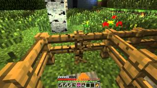 Enes ve Ali Oynuyor - Minecraft Elemental Adventure Map