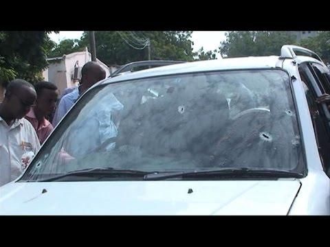 Famed Somali singer and lawmaker shot down by Shebab