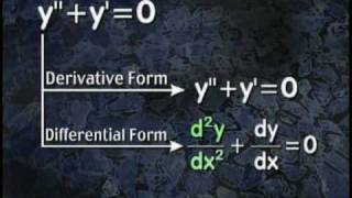 What is a Differential Equation?