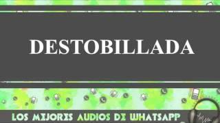 Destobillada - Conversaciones De Whatsapp - Los Mejores Audios Y Videos Whatsapp